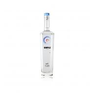 Gin GInpilz Pilzer